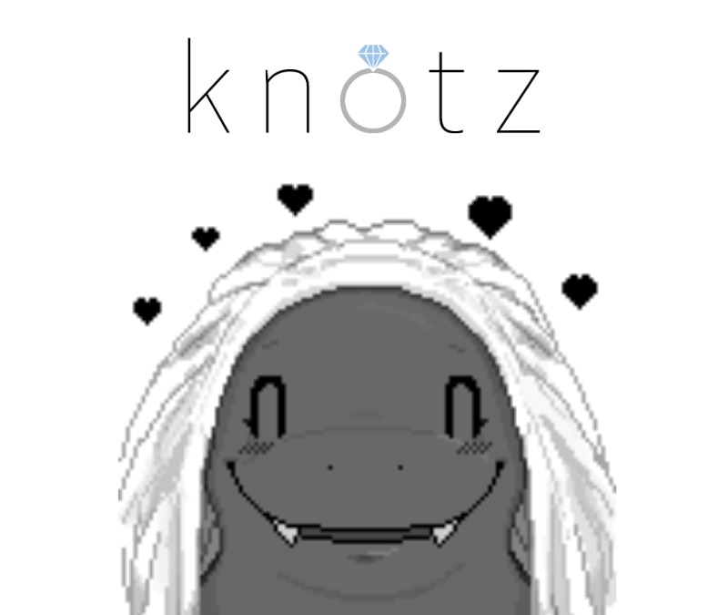 What is Knotz